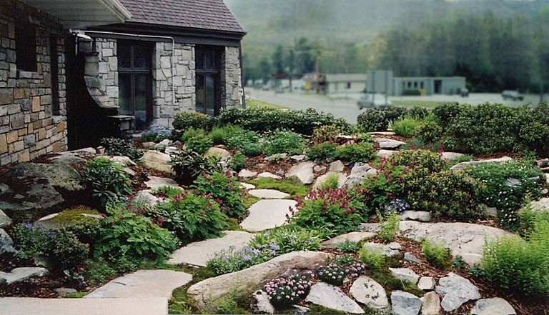 Lovely Bee Balm And Boulders