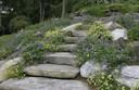 Steps-n-Blue.jpg